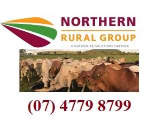 Northern Rural Group