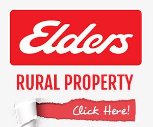 ELDERS PROPERTY