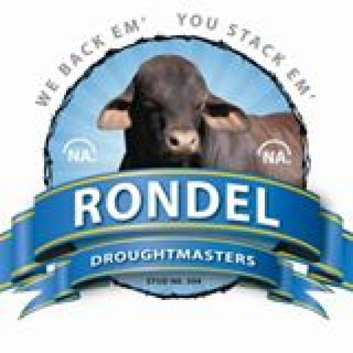 Rondel Droughtmasters