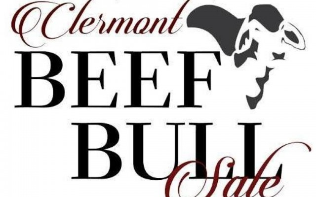 SALE O SALE O BEEF BULL SALE CLERMONT