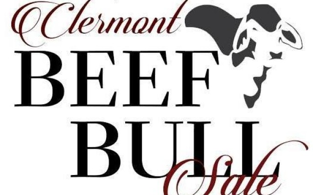 Clermont Beef Bull Sale 2020