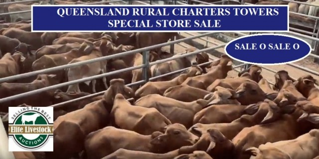 RESULTS QUEENSLAND RURAL SPECIAL STORE SALE