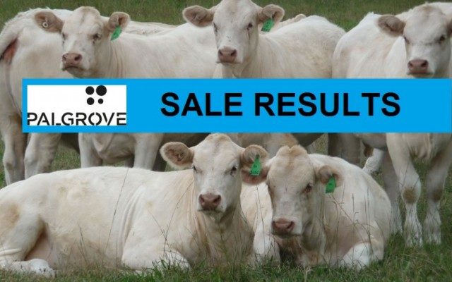 PALGROVE SALE RESULTS