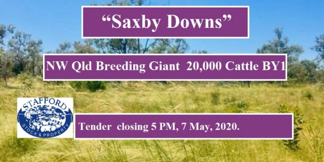 """Saxby Downs"""