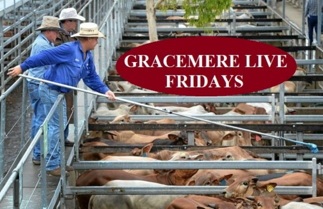 GRACEMERE LIVE ON FRIDAYS