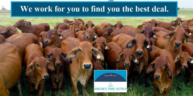 Agribusiness Finance Australia is for you