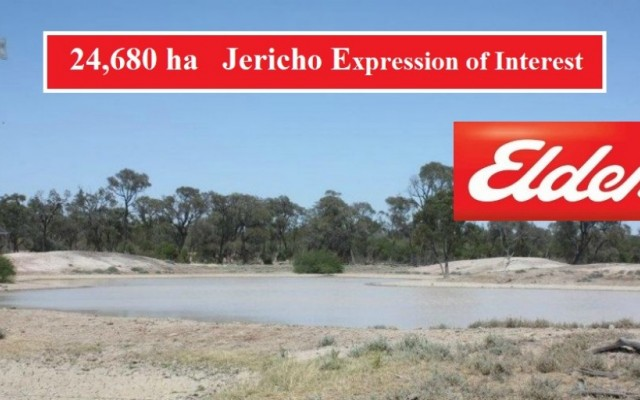 EXPRESSIONS OF INTEREST  ( JERICHO)