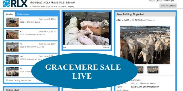 Gracemere live on Wednesdays