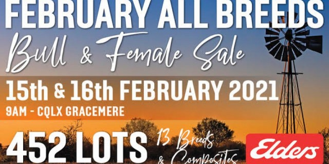 February All Breeds Sale (2021)